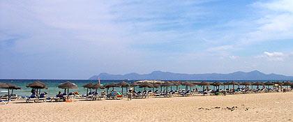 Rejser Alcudia
