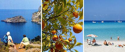 Rejser Mallorca