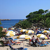Rejser Cala Millor